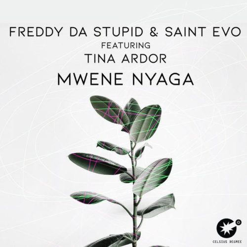Freddy Da Stupid Ft. Saint Evo & Tina Ardor – Mwene Nyaga (Original Mix)